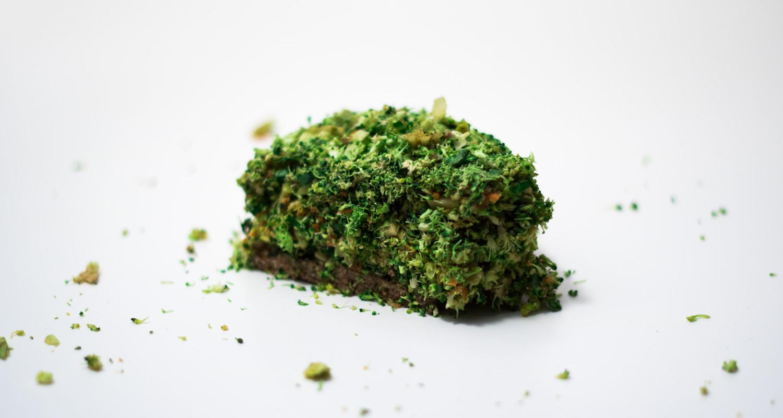 Raw Vegan Veggie Quiche